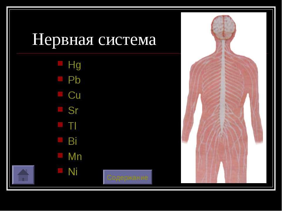 Нервная система Hg Pb Cu Sr Tl Bi Mn Ni Содержание