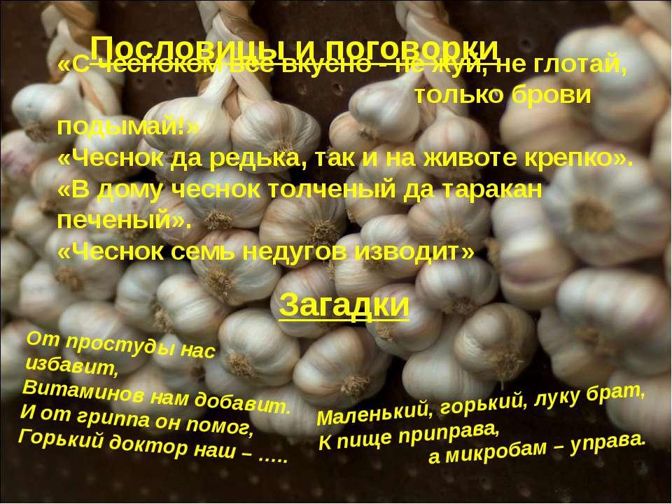 Пословицы и поговорки «С чесноком все вкусно - не жуй, не глотай, только бров...