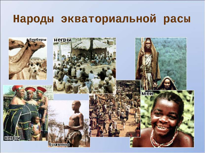 Народы экваториальной расы