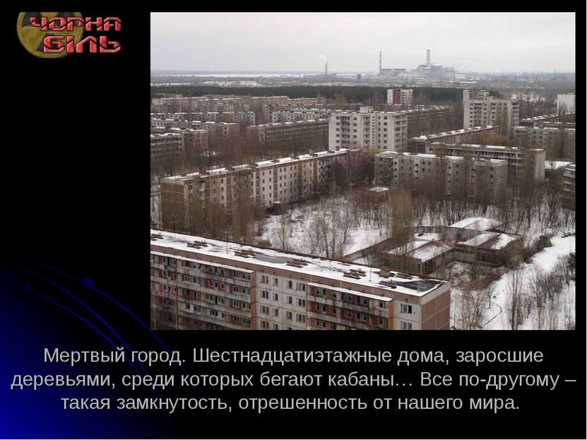 Мертвый город. Шестнадцатиэтажные дома, заросшие деревьями, среди которых бег...