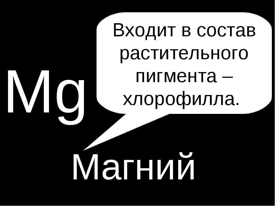 P Mg Магний Входит в состав растительного пигмента – хлорофилла.