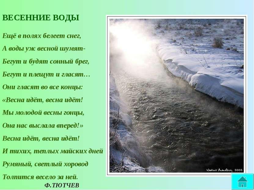ВЕСЕННИЕ ВОДЫ Ещё в полях белеет снег, А воды уж весной шумят- Бегут и будят ...