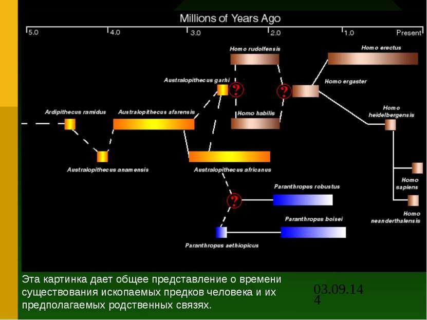 Эта картинка дает общее представление о времени существования ископаемых пред...