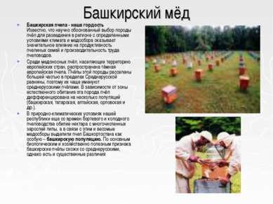 Башкирский мёд Башкирская пчела - наша гордость Известно, что научно обоснова...
