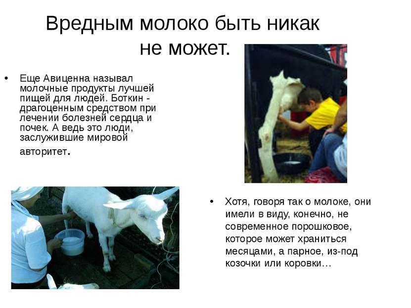 Вредным молоко быть никак не может. Хотя, говоря так о молоке, они имели в ви...