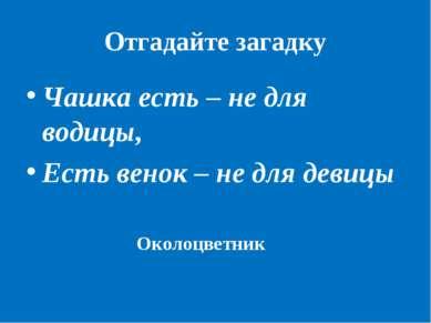 Отгадайте загадку Чашка есть – не для водицы, Есть венок – не для девицы Окол...