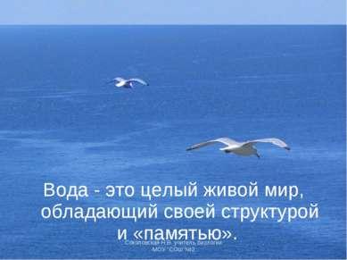 Вода - это целый живой мир, обладающий своей структурой и «памятью». Соколовс...