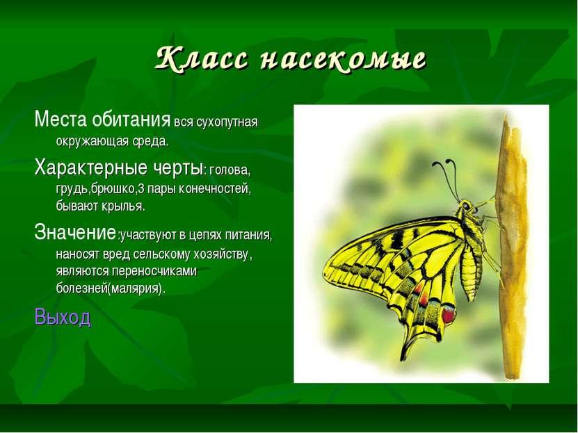 Класс насекомые Места обитания вся сухопутная окружающая среда. Характерные ч...