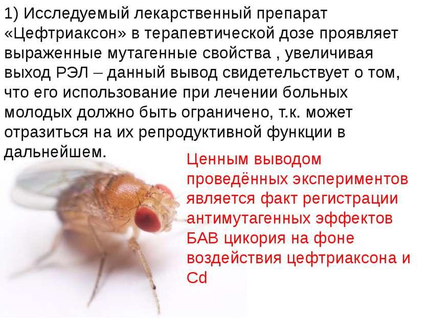 Домащенко А.Н. 1) Исследуемый лекарственный препарат «Цефтриаксон» в терапевт...