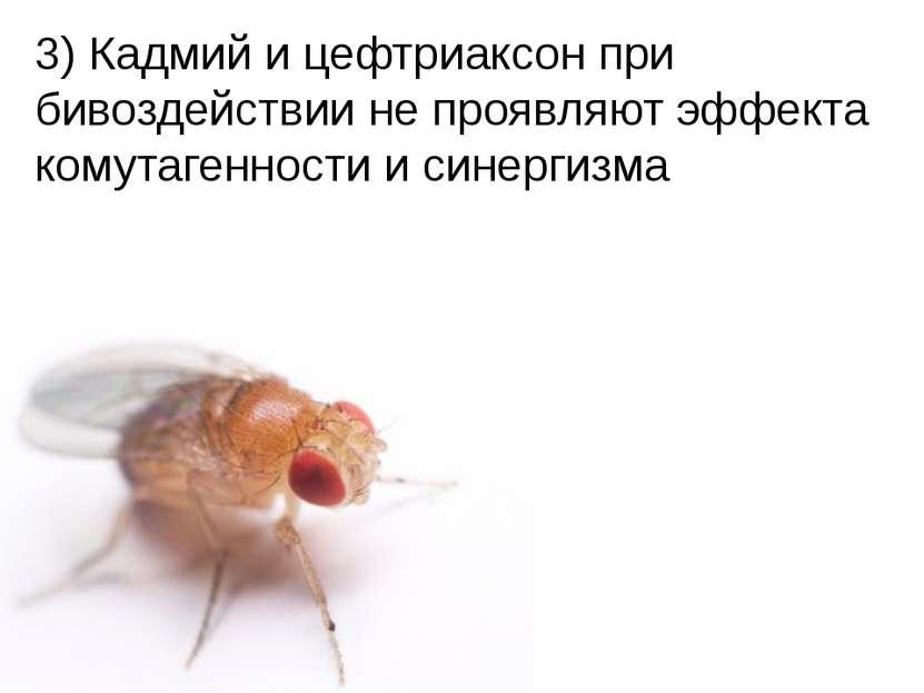 Домащенко А.Н. 3) Кадмий и цефтриаксон при бивоздействии не проявляют эффекта...