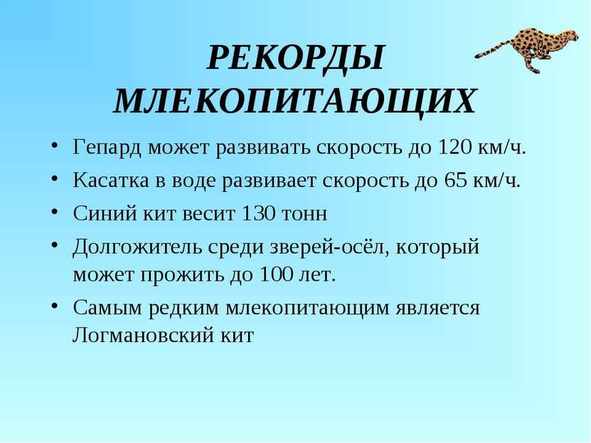 РЕКОРДЫ МЛЕКОПИТАЮЩИХ Гепард может развивать скорость до 120 км/ч. Касатка в ...