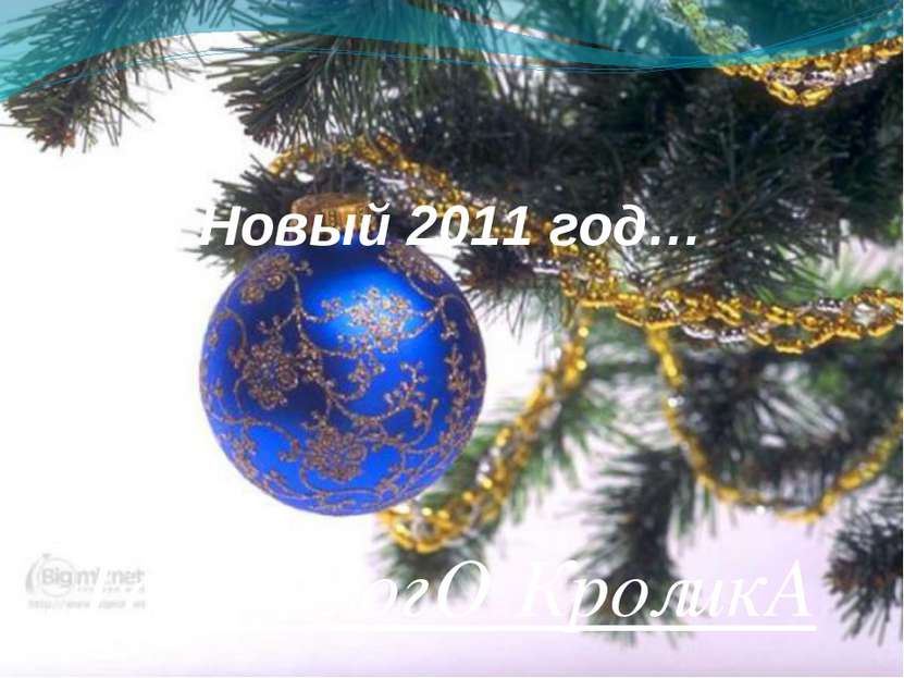 Новый 2011 год… ГоД БелогО КроликА