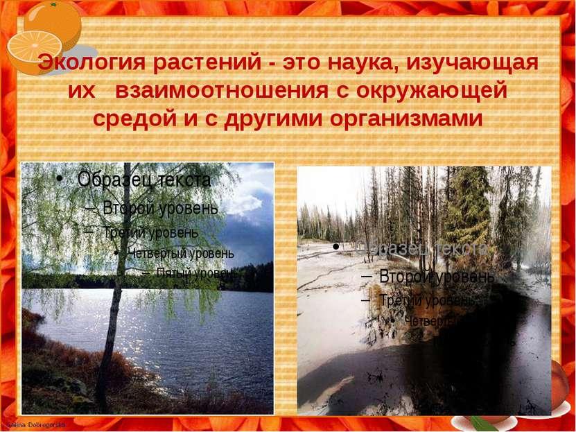 Экология растений - это наука, изучающая их взаимоотношения с окружающей сред...