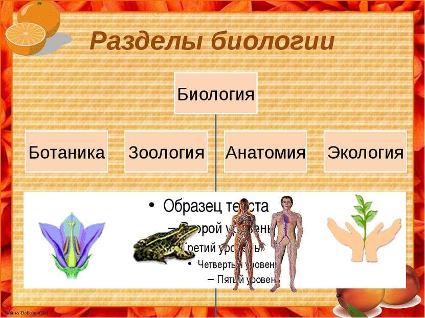 Разделы биологии