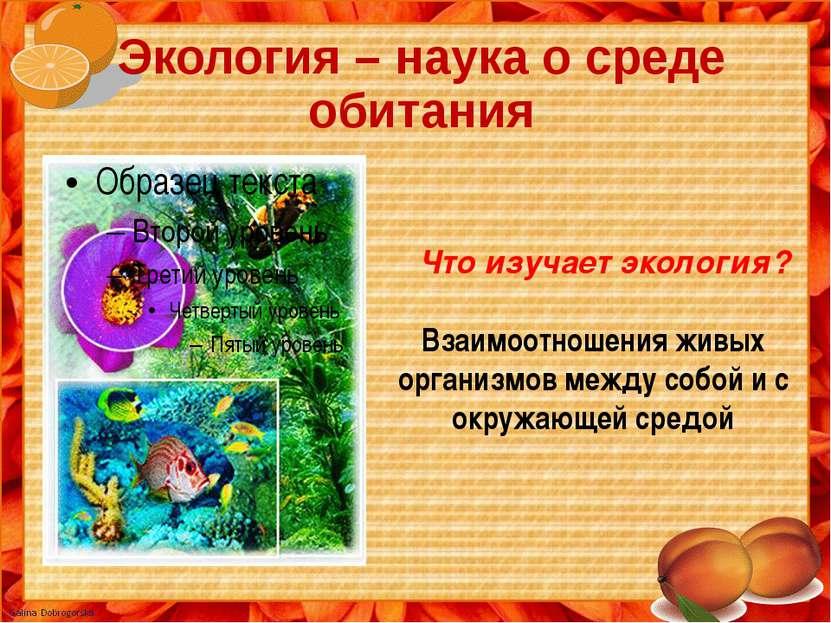 Экология – наука о среде обитания Что изучает экология? Взаимоотношения живых...