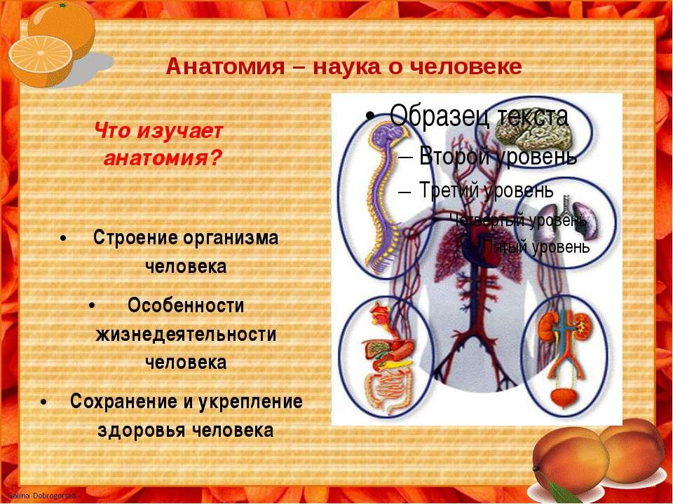 Анатомия – наука о человеке Что изучает анатомия? Строение организма человека...