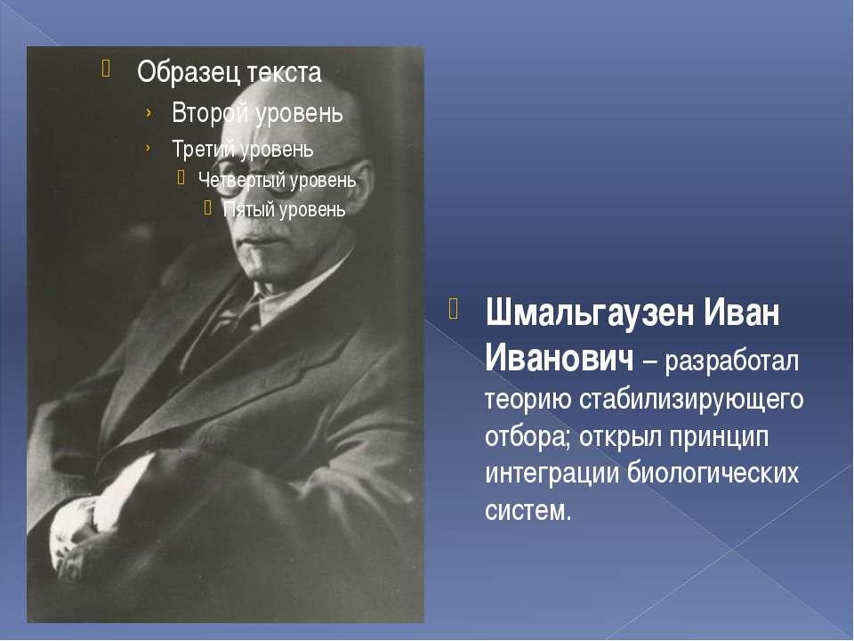 Шмальгаузен Иван Иванович – разработал теорию стабилизирующего отбора; открыл...