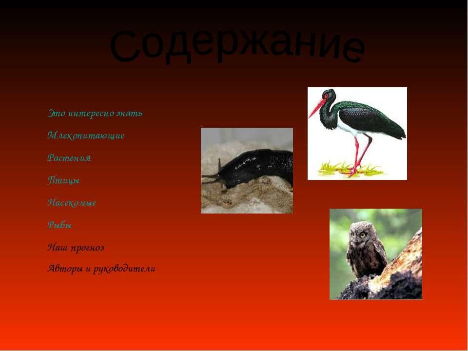 Это интересно знать Млекопитающие Растения Птицы Насекомые Рыбы Наш прогноз А...