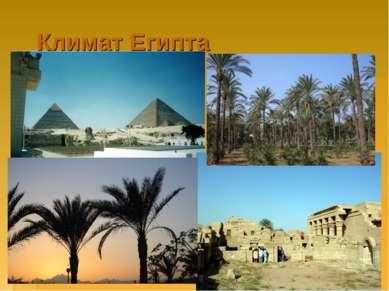 Климат Египта