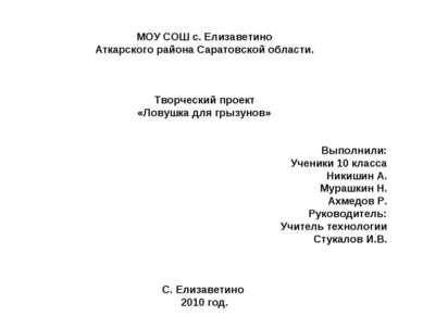 МОУ СОШ с. Елизаветино Аткарского района Саратовской области. Творческий прое...