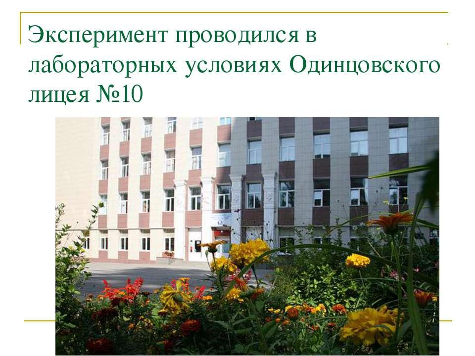 Эксперимент проводился в лабораторных условиях Одинцовского лицея №10