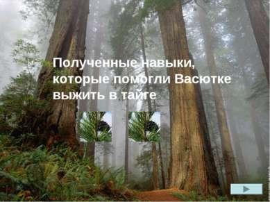 Полученные навыки, которые помогли Васютке выжить в тайге