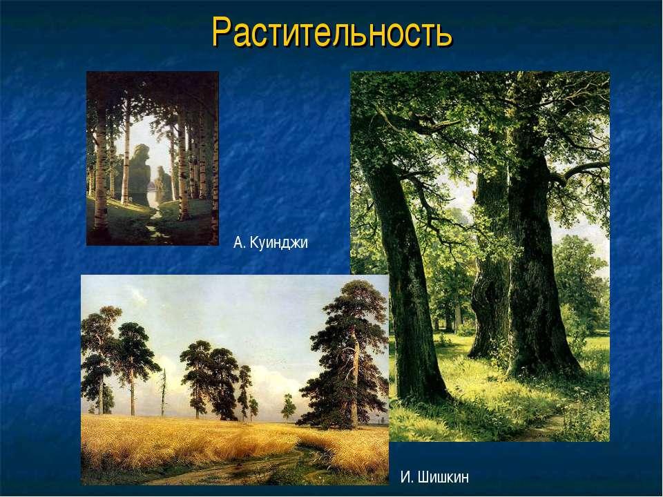 Растительность А. Куинджи И. Шишкин