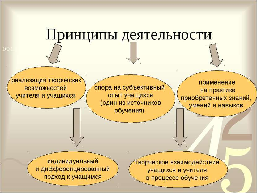 Принципы деятельности реализация творческих возможностей учителя и учащихся и...
