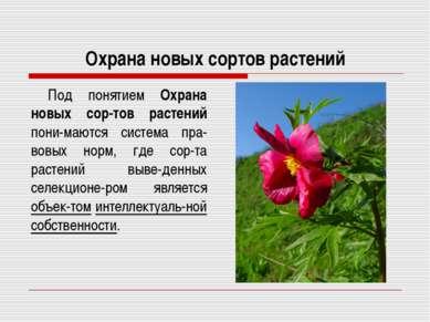 Охрана новых сортов растений Под понятием Охрана новых сор-тов растений пони-...