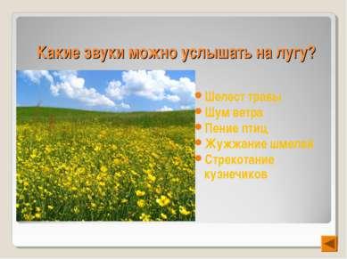 Какие звуки можно услышать на лугу? Шелест травы Шум ветра Пение птиц Жужжани...