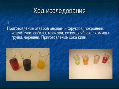 Ход исследования 1. Приготовление отваров овощей и фруктов: покровных чешуй л...