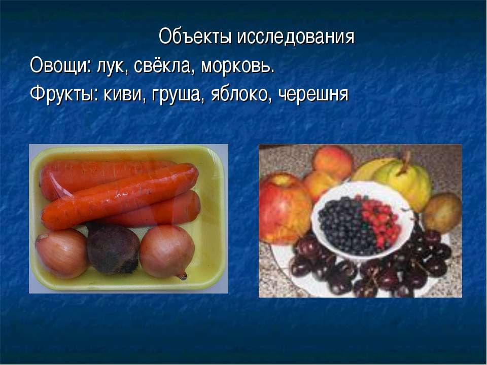 Объекты исследования Овощи: лук, свёкла, морковь. Фрукты: киви, груша, яблоко...