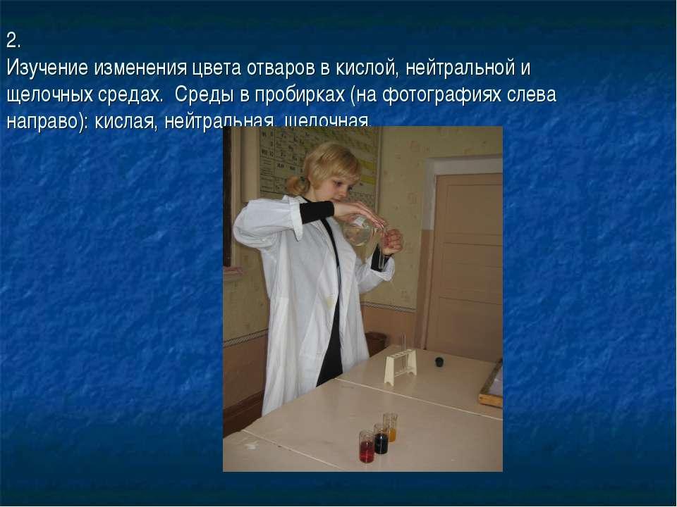 2. Изучение изменения цвета отваров в кислой, нейтральной и щелочных средах. ...