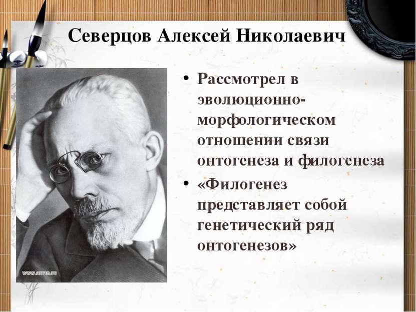 Северцов Алексей Николаевич Рассмотрел в эволюционно-морфологическом отношени...