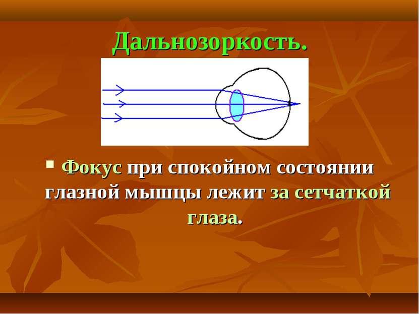 Дальнозоркость. Фокус при спокойном состоянии глазной мышцы лежит за сетчатко...