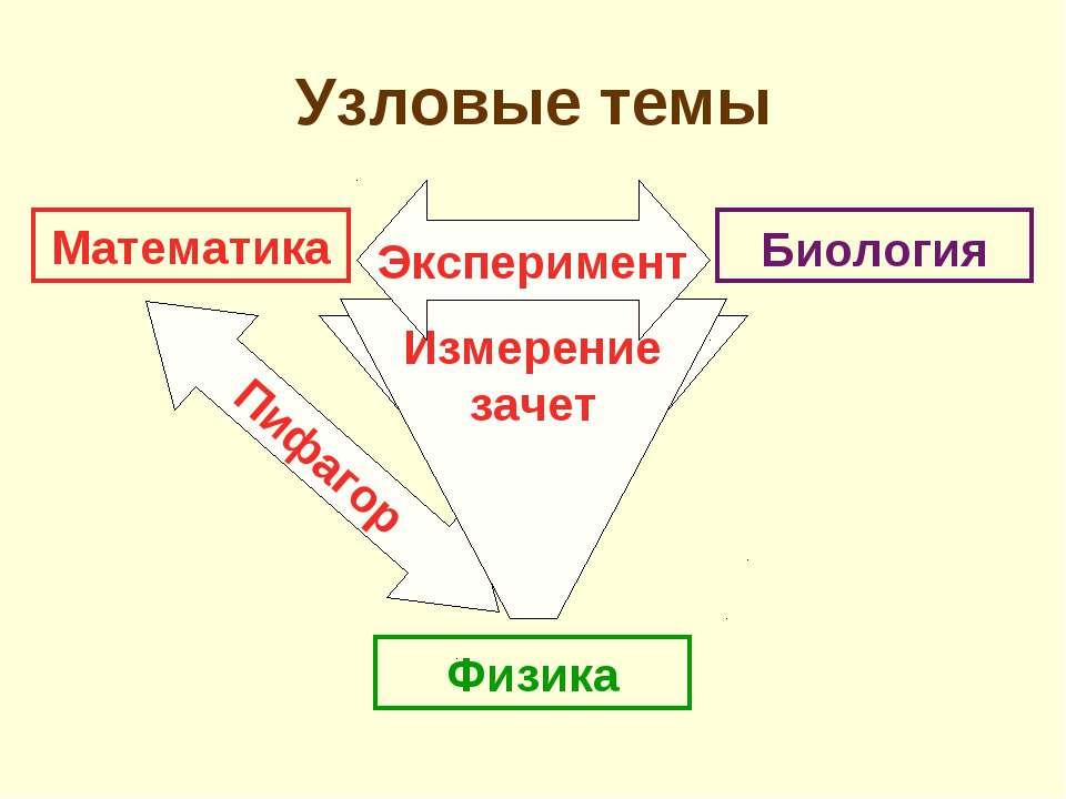 Математика Физика Биология Аристотель Пифагор Измерение зачет Эксперимент Узл...