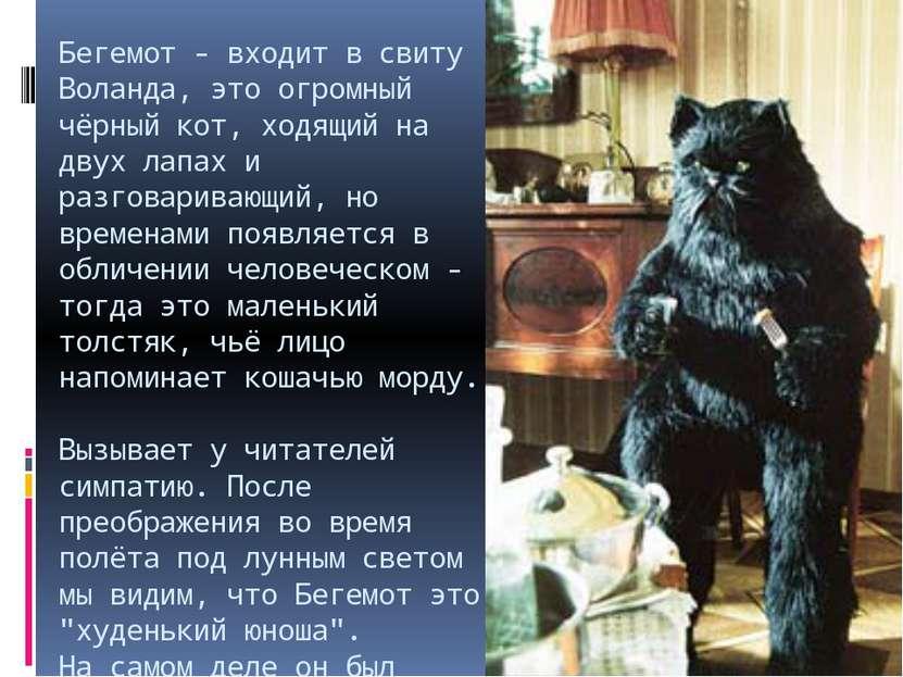 Бегемот - входит в свиту Воланда, это огромный чёрный кот, ходящий на двух ла...