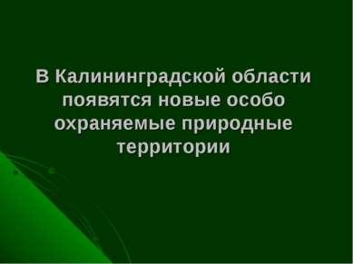 В Калининградской области появятся новые особо охраняемые природные территории