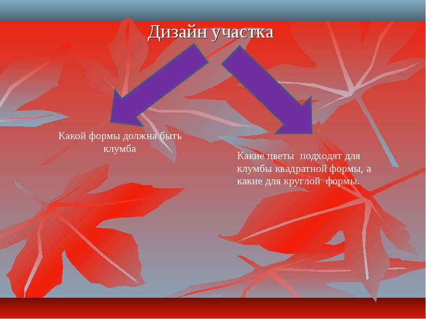 Дизайн участка Какой формы должна быть клумба Какие цветы подходят для клумбы...