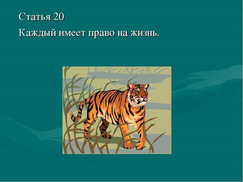 Статья 20 Каждый имеет право на жизнь.