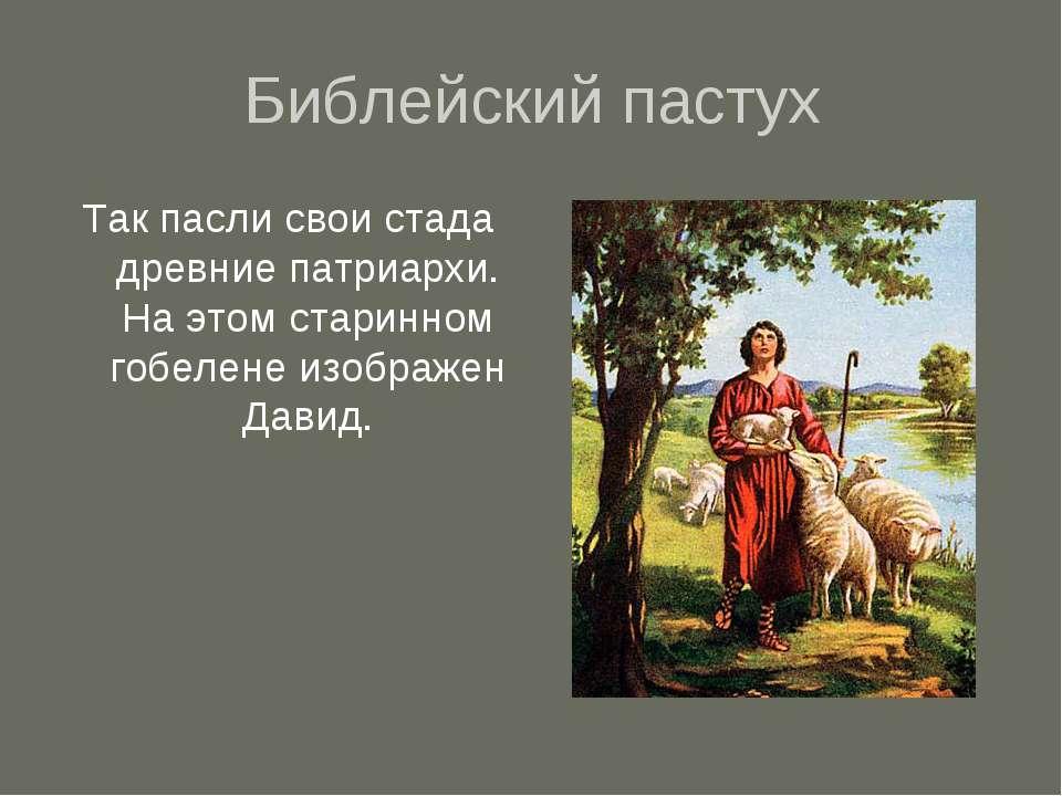Библейский пастух Так пасли свои стада древние патриархи. На этом старинном г...