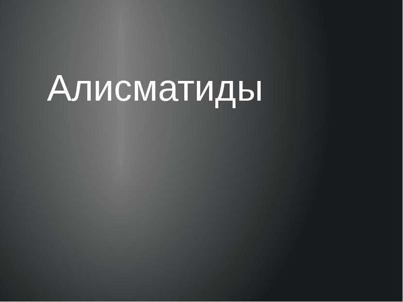Алисматиды
