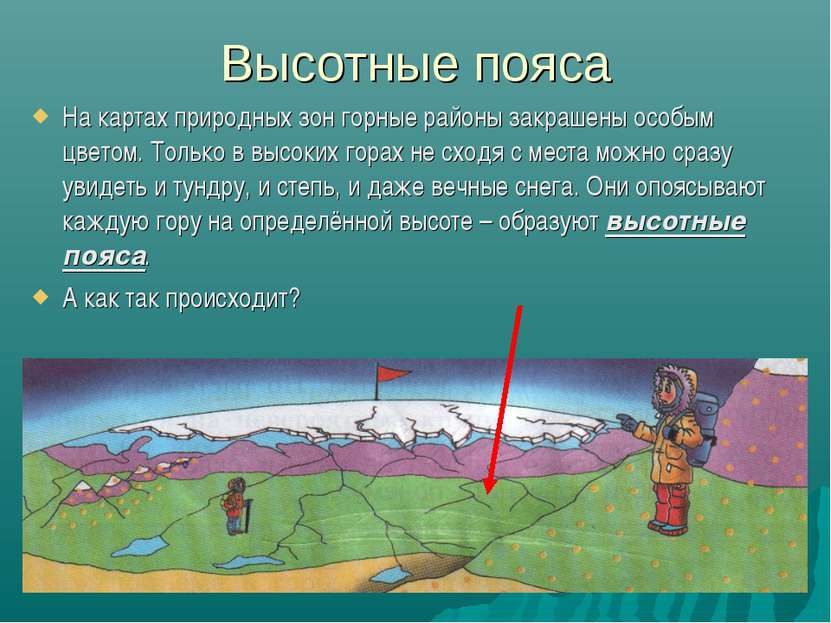 Высотные пояса На картах природных зон горные районы закрашены особым цветом....
