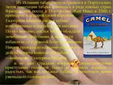 Из Испании табак распространился в Португалию. Затем плантации табака появили...