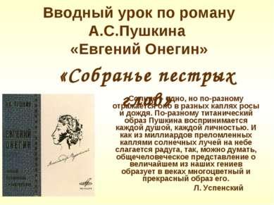 Вводный урок по роману А.С.Пушкина «Евгений Онегин» Солнце – одно, но по-разн...