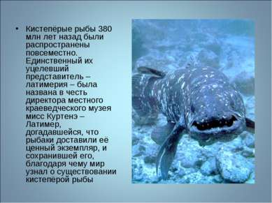 Кистепёрые рыбы 380 млн лет назад были распространены повсеместно. Единственн...