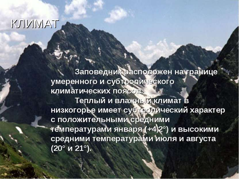 КЛИМАТ Заповедник расположен на границе умеренного и субтропического климатич...