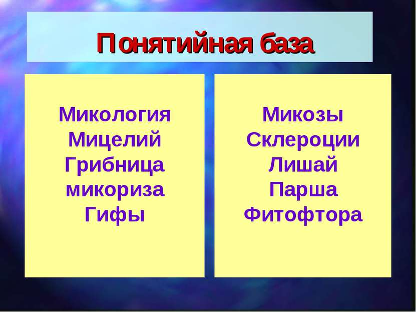 Понятийная база Микология Мицелий Грибница микориза Гифы Микозы Склероции Лиш...
