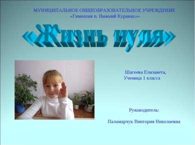 Руководитель: Паламарчук Виктория Николаевна МУНИЦИПАЛЬНОЕ ОБЩЕОБРАЗОВАТЕЛЬНО...