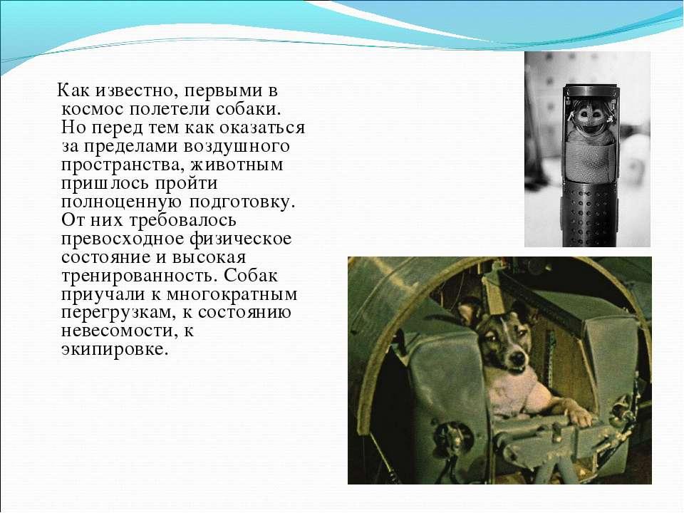 Как известно, первыми в космос полетели собаки. Но перед тем как оказаться за...